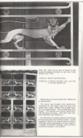 Architectural Metalwork in Copper & Its Alloys. Metal, A. L. McMullen, FRIBA.