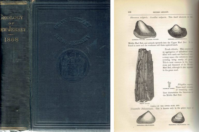 Geology of New Jersey; By Authority of the Legislature. Geology, George H. Cook.