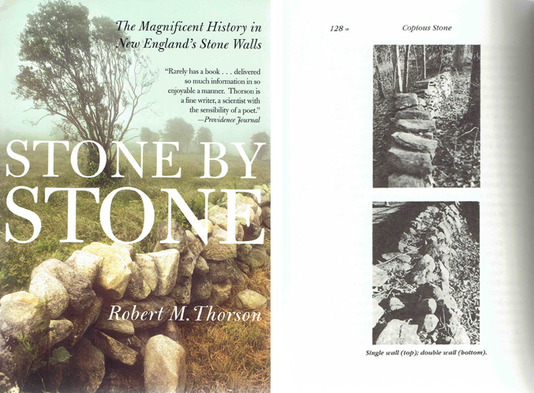 Stone by Stone; The Magnificent History in New England's Stone Walls. Stone, Robert M. Thorson.
