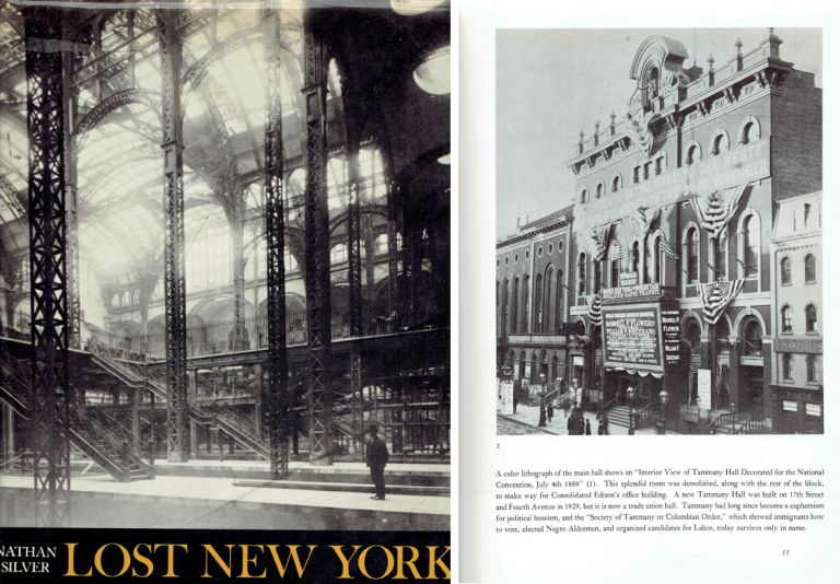 Lost New York. Architectural History, Nathan Silver.